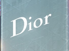 Christian Dior  Ginza